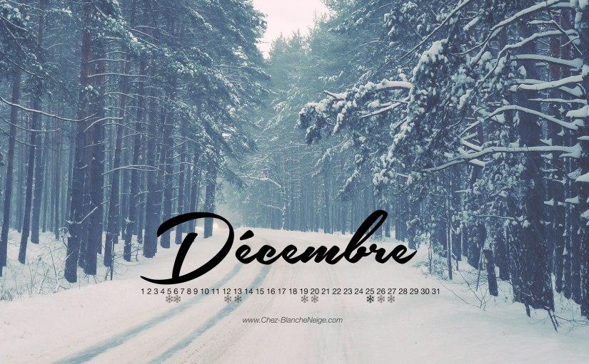 decembre1.jpg