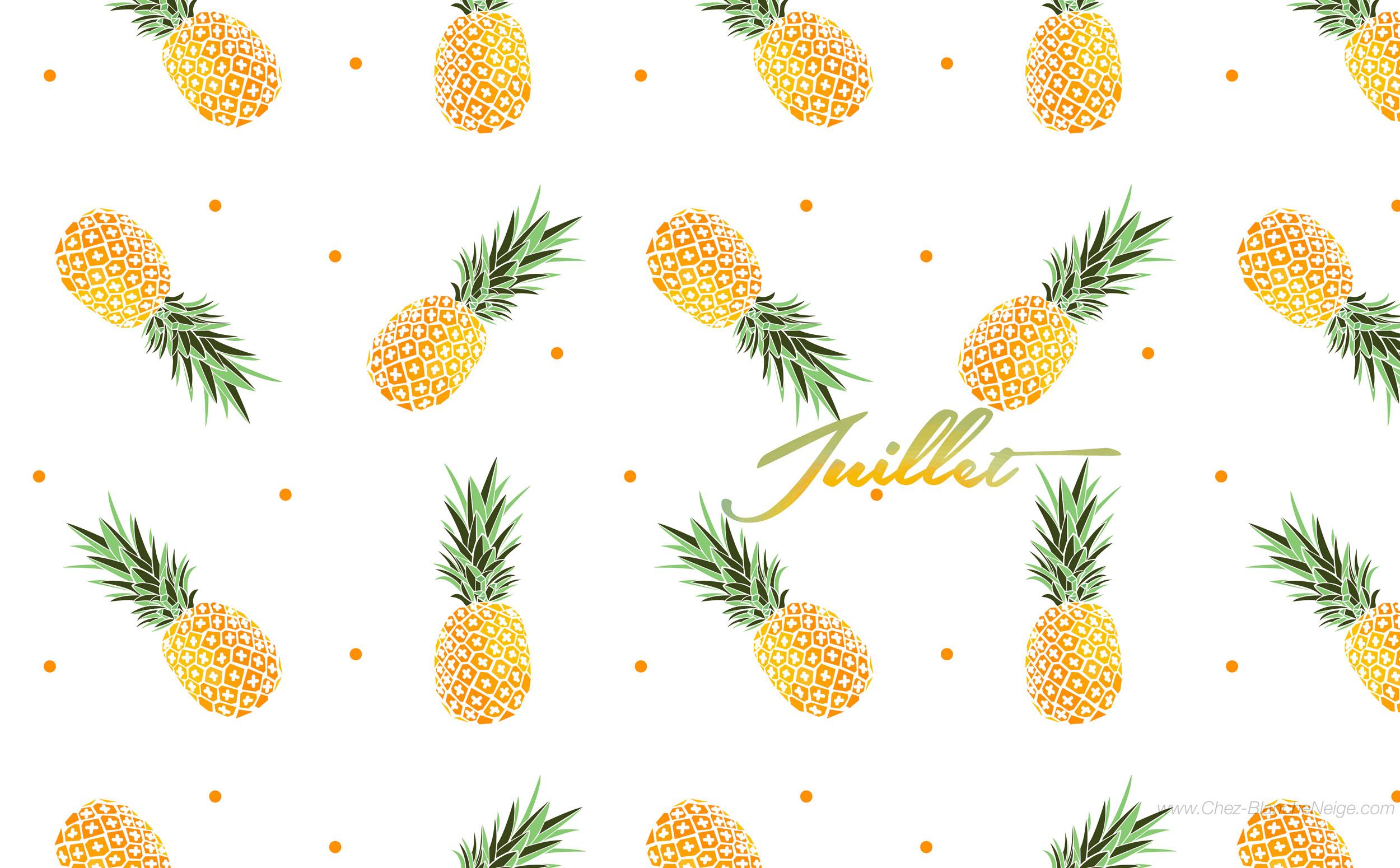 juillet let s go ananas chez blanche neige. Black Bedroom Furniture Sets. Home Design Ideas