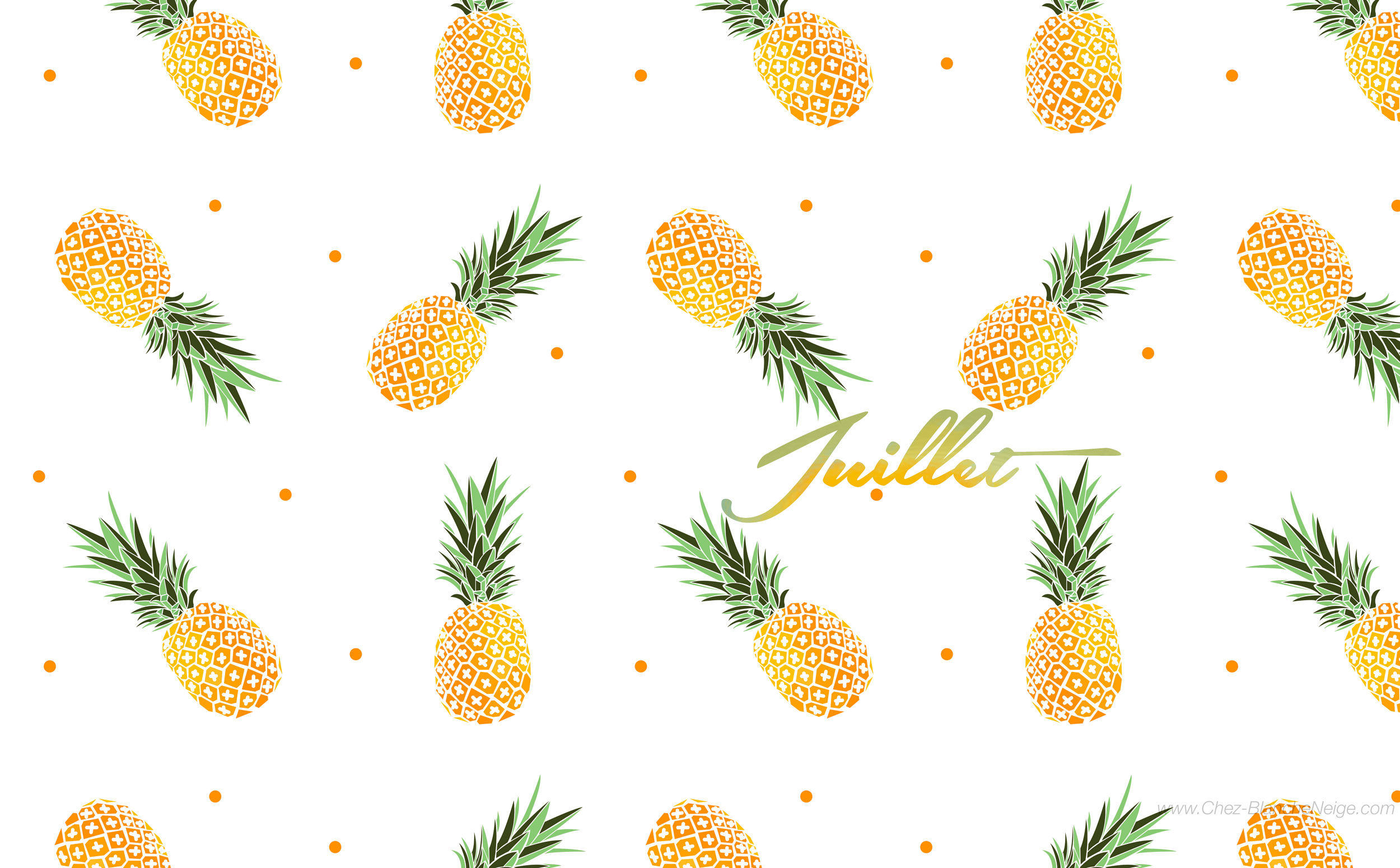 Juillet let s go ananas chez blanche neige for Fond ecran ananas